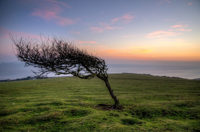 beautiful winds 1
